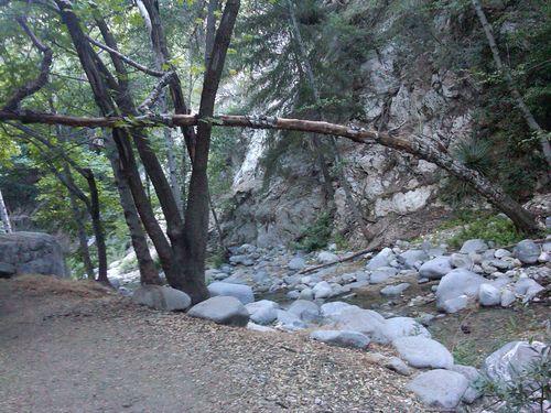 Switzer Falls7