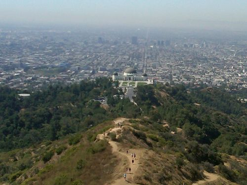 Mount Hollywood-juliewrightlandcompany