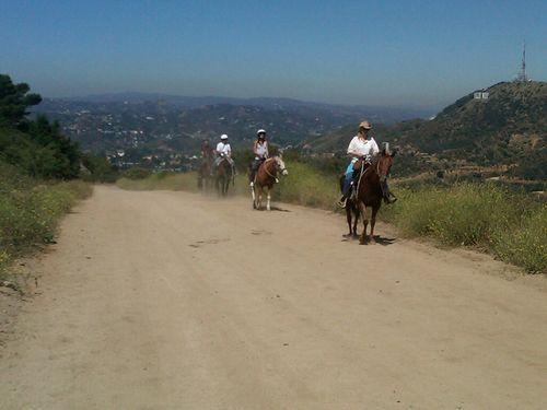 Mount Hollywood2-juliewrightlandcompany