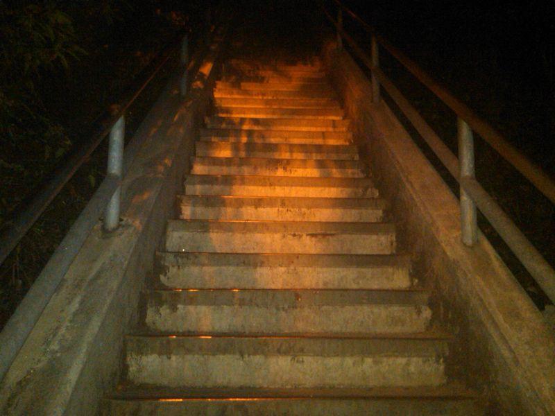 Santa Monica Stairs2-juliewrightlandcompany