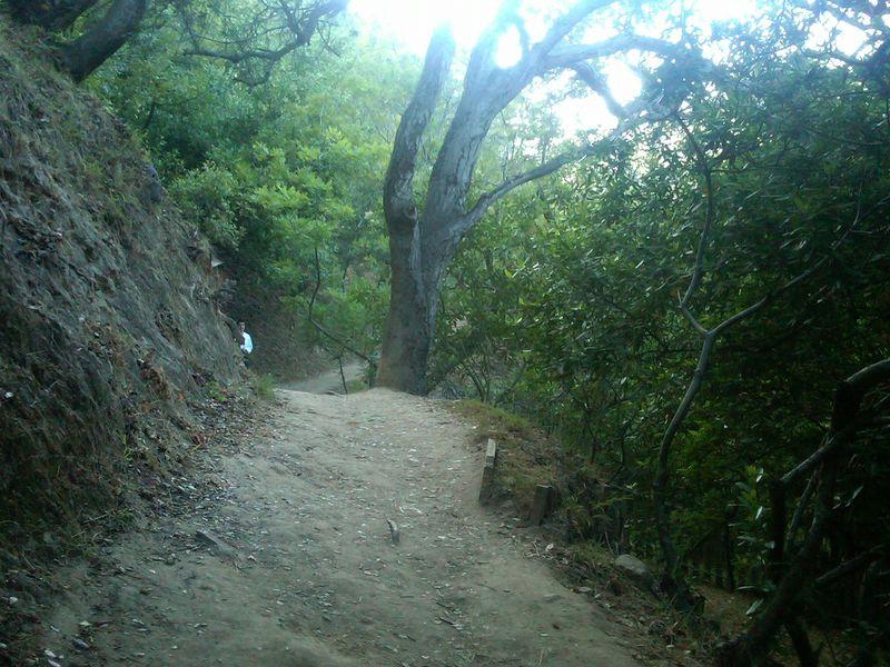 Temescal Canyon4-juliewrightlandcompany